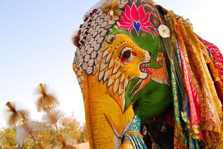 Segon premi del festival de l'elefant 2008
