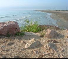 Furgorincón 11.2: Playa del Fangar