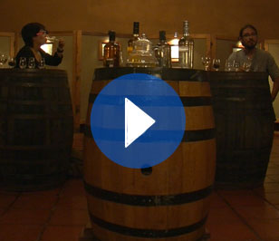 (Español) 30. Degustación de pisco en Vicuña