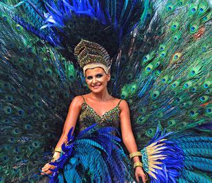 El Carnaval de Barranquilla 2016 en 25 fotos