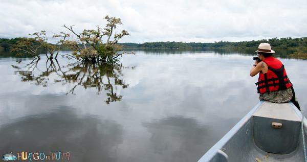 Laguna Grande, un remanso de paz en el río Cuyabeno