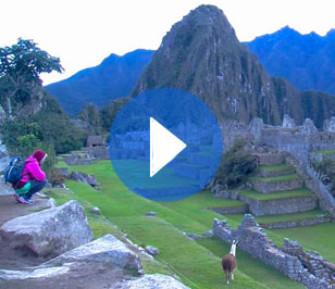 Lonely in Machu Picchu
