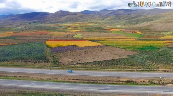Recorrem la carretera que uneix Oruro amb la Paz, envoltats de cultius de quínoa.