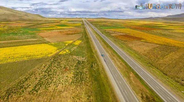 Rutas de Bolivia: Recorrem la carretera que uneix Oruro amb la Paz, envoltats de cultius de quínoa.