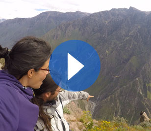Colca canyon, where the condor dominates the sky
